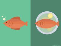 Fish \ Grill