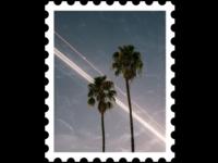 Postcard stamp 6 [ palms ]