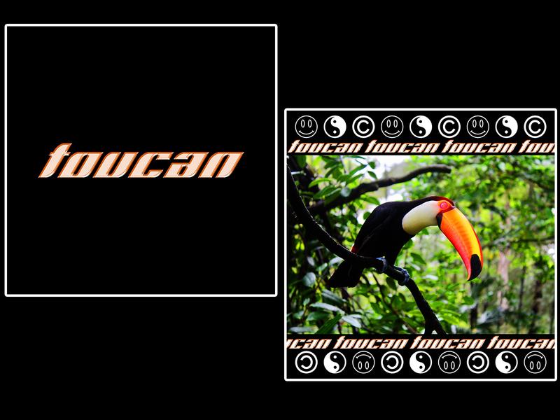 toucan [ bird collection 7/7 ] END toucan birds graphicdesign poster design poster art poster design
