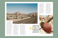Leave No Trace: Travel Mag Mockup