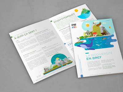 Plaquette pour formation graphisme vector typography brochure design illustration