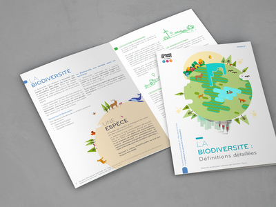 Plaquette Formation 2 graphisme typography vector brochure design illustration