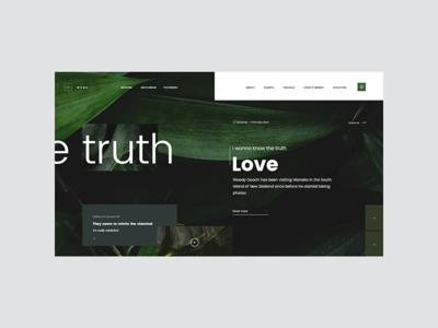TR 2046 0302 leaf ui web landing page minimal green