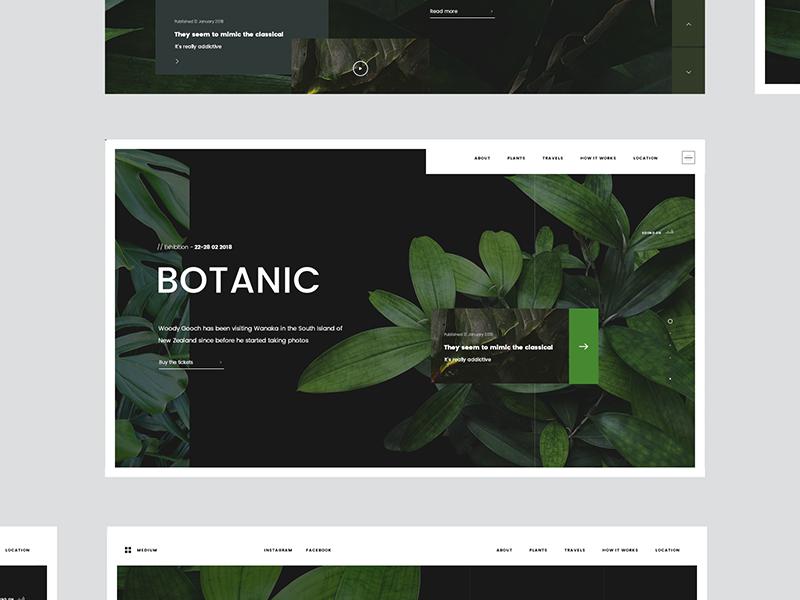 Tr 2046 0402 Drb leaf ui web landing page minimal green