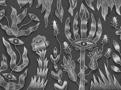 Illustration for slovak band newalbum music creatures eyes flowers illustration