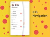 IOS Navigations