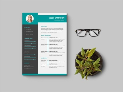 Free Word Resume Template with Professional Look