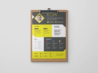 Free Clean Designer CV Templat