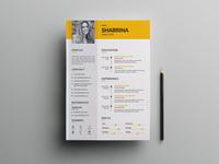 Free Illustrator Resume Template for Job Seeker