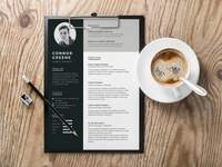 Free Experience Resume Template