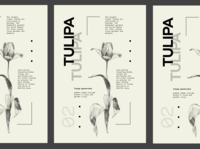 Flower Series - Tulipa