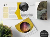 Creative Clean Trifold Brochure