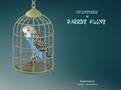 Book's cover colorful cage design character illustraion adventure parrot book cover cover design