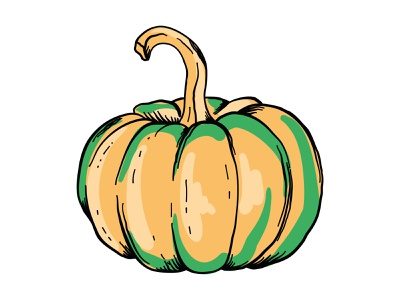 Pumpkin vector illustration health eco vegetal farm season autumn orange pumpkin print poster sticker icon logo vector flat design illustration art