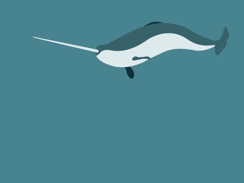 Narwhal visual visual design vector art illustrators design underwater fish narwhals narwhal sea ocean unicorn sea animal vectorart vector art visual illustrator illustration narwhale sketch