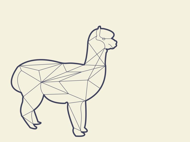 Alpaca cute animal nederlands design dutch illustration illustrate illustration fluffy animals animal mammal llama geen thee alpaca sketch