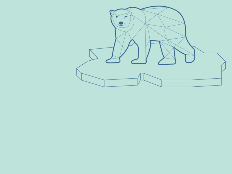 polar bear artic geometric line art design dutch illustrator illustrator illustration nature gray geen thee wildlife water lines minimal design minimal mammal 2d vector animals animal
