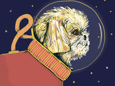 Burt Spacedog