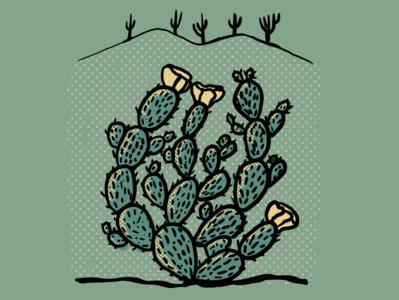 Cactus Series - Image 07