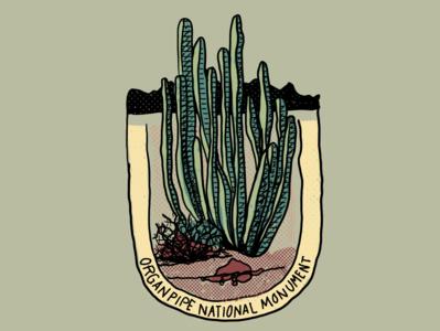 Cactus Series - Image 06