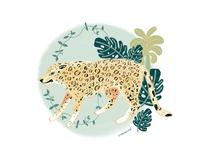 Big Cats: Leopard 🐆