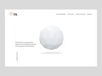 TFN Website Concept ◽