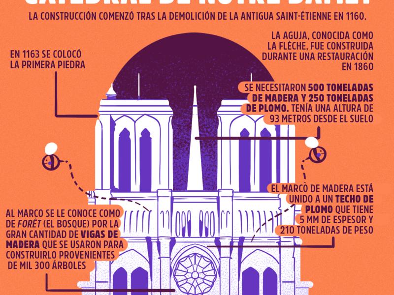 Infografia sobre Notre Dame architecture notre dame infography illustration