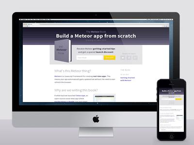 The Meteor Book source sans pro landing page book form purple