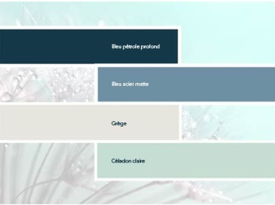 Color palette web - brand identity brand identity website design flyer design webdesign logo graphic  design branding minimalist clean freelance design brand