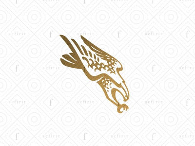 Eagle Assault Logo wild detailed for sale branding classic attacking claws wings predator sentinel law logo security bird guardian speed fast flight assault eagle