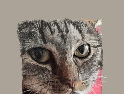 nym portrait