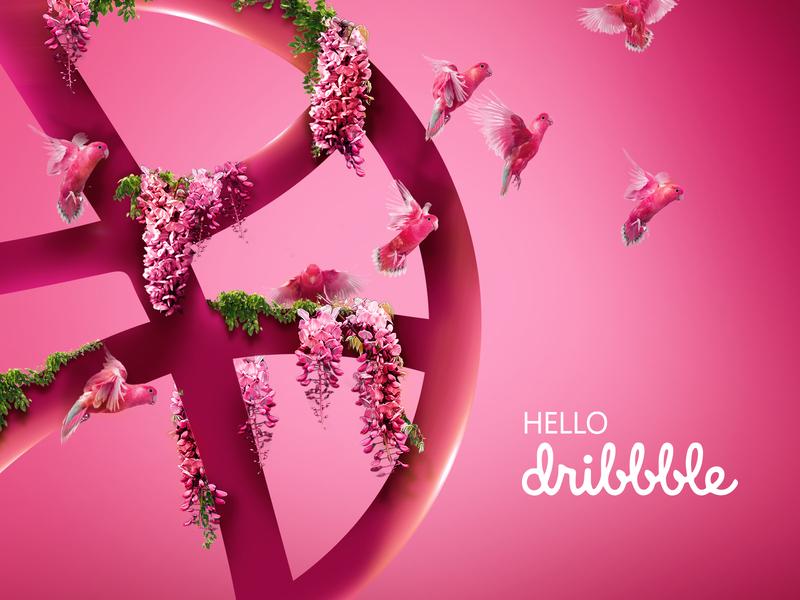hello hello dribble