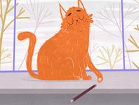 Cat illustraion cartoon character design cg illustration 2d digital