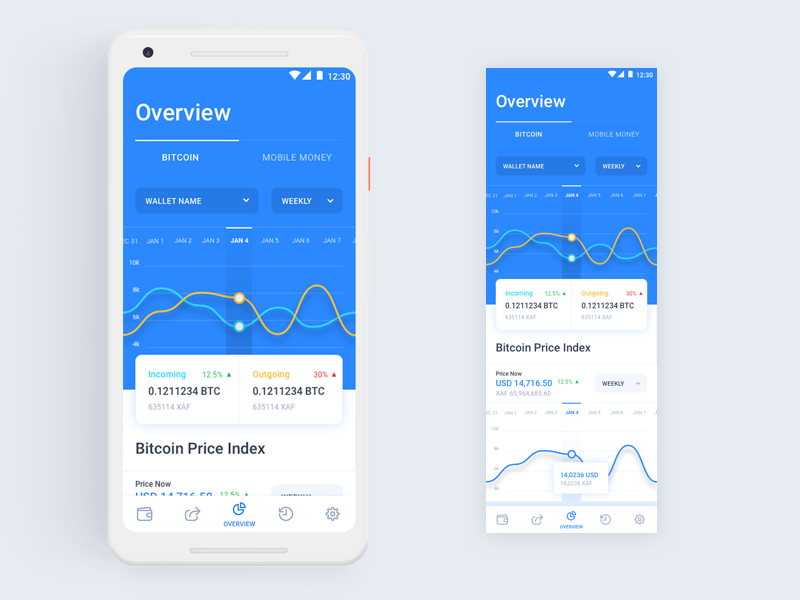 Bitcoin Wallet Overview Dashboard by Imran Khan on Dribbble