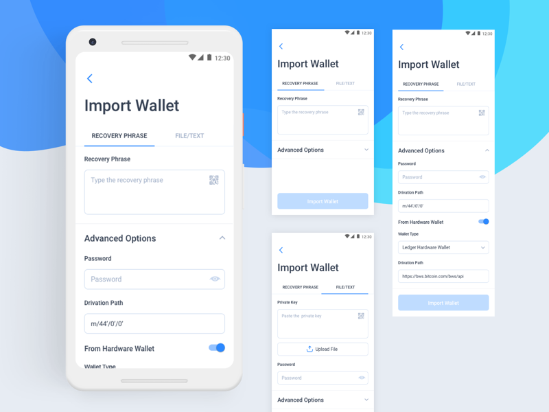Import Wallet import wallet dashboard crypto wallet digital wallet blockchain cryptocurrency design interaction typography ui ux