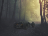 Buggy in the haunted forest