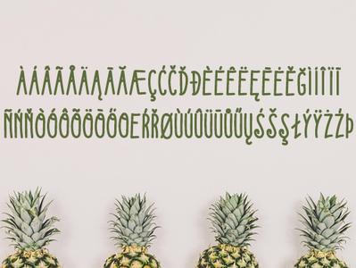 Kedjoe Font ( International Glyph ) ui line art app typeface simple font simpel organic font design font collection font bundle font awesome design flat minimal handdraw font branding typography type lettering