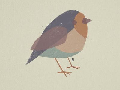 little bird birds logo branding ui design editorial nature illustration flat illustration bird logo bird icon bird illustration cute bird
