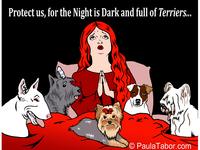 Night Of Terriers