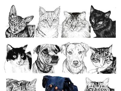 digital pet portrait composite