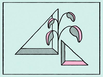 plants & geometry color art 2d design hand drawn plant illustration geometic geometric design vector geometry plants illustration