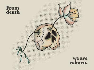 Death & Reborn plant illustration plant reborn death skull illustration