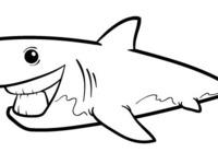 Shark Lines