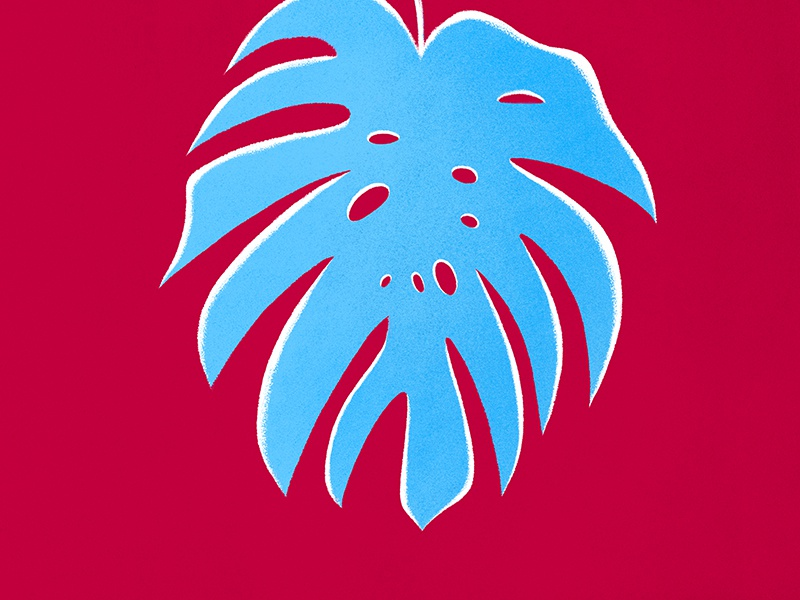 Philodendron leaf botanic noise vintage retro texture flora brush contrast illustration philodendron plant