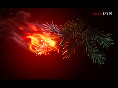 Wildfire is beginning. Realistic vector illustration