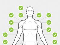 Body chart anterior
