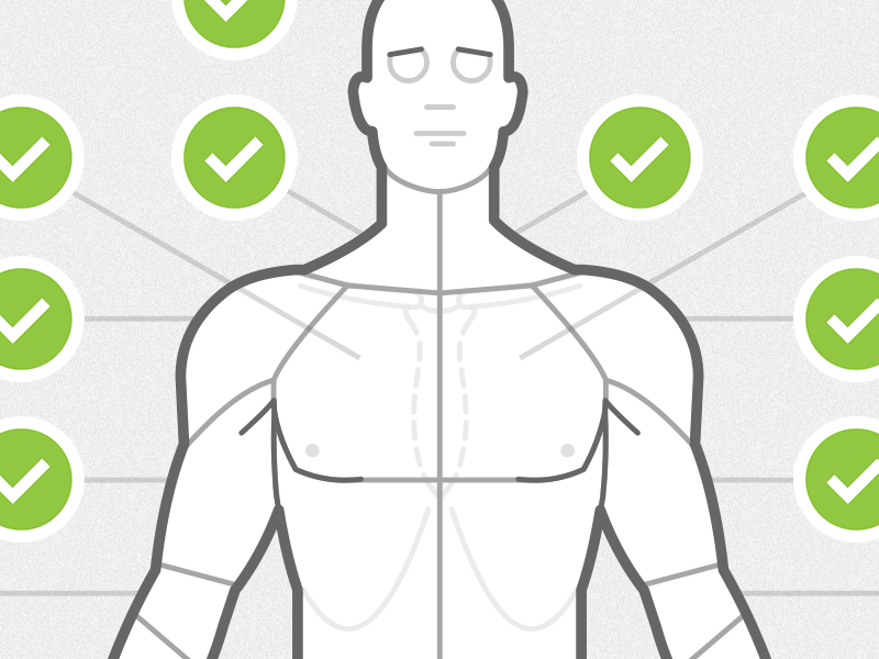Body Chart Anterior By Chris Wharton Dribbble Dribbble