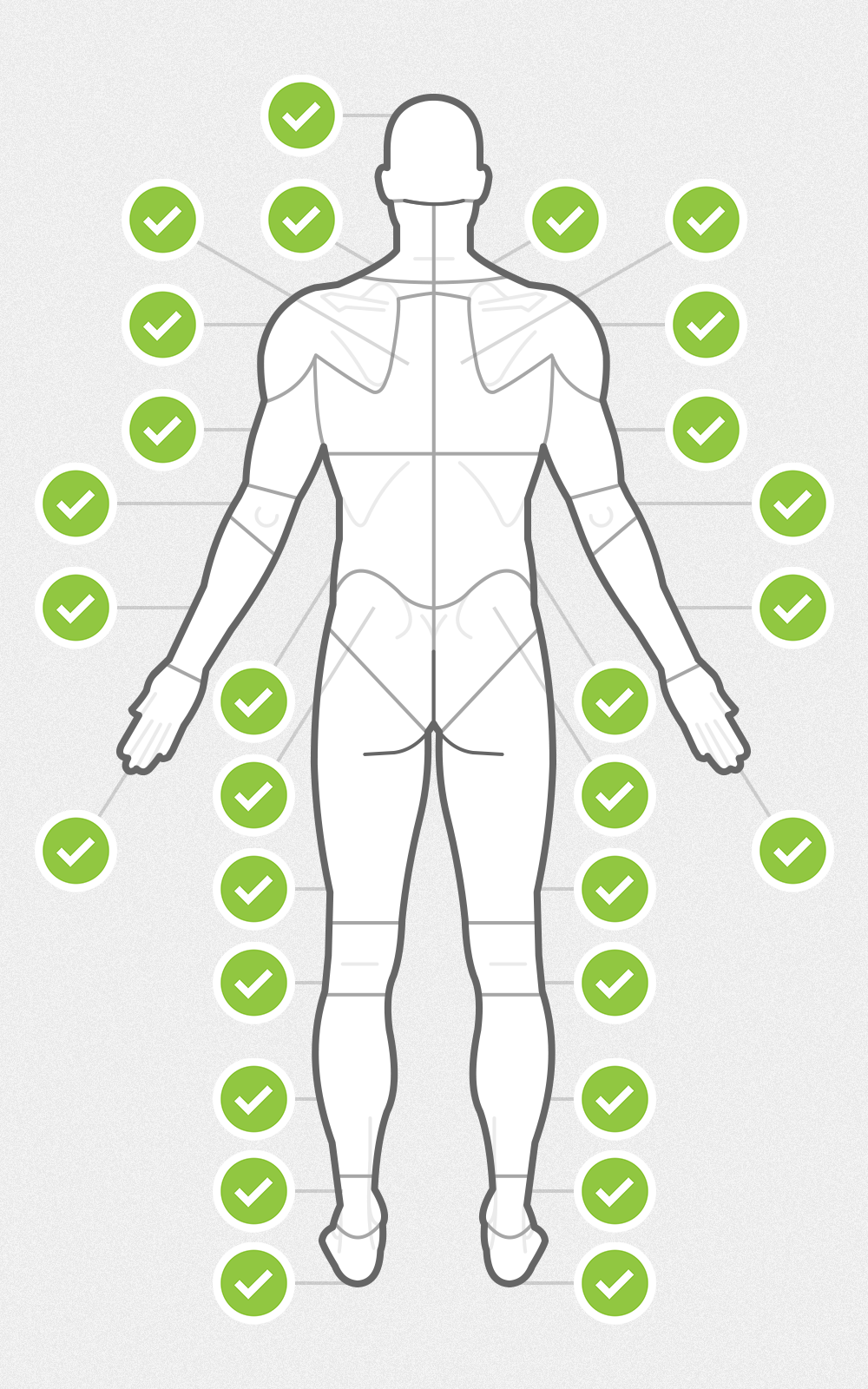 Body chart posterior