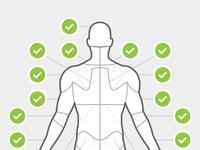 Body chart posterior