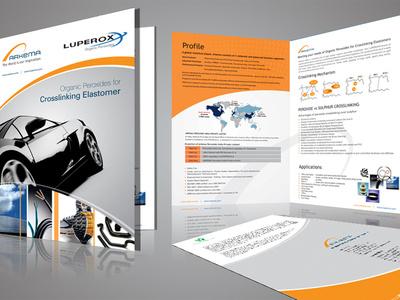 I,m a Professional Graphic Designer flyers  brochures business cards logo design graphics  design
